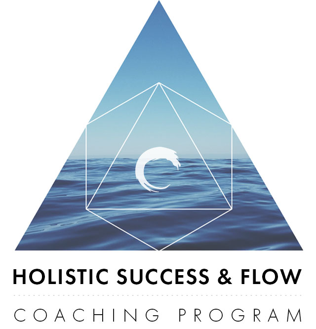 Flow-Program-Graphic